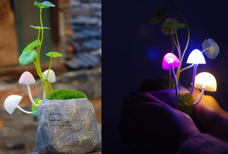 lampa11